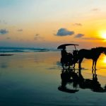 Keindahan Pantai Parangtritis